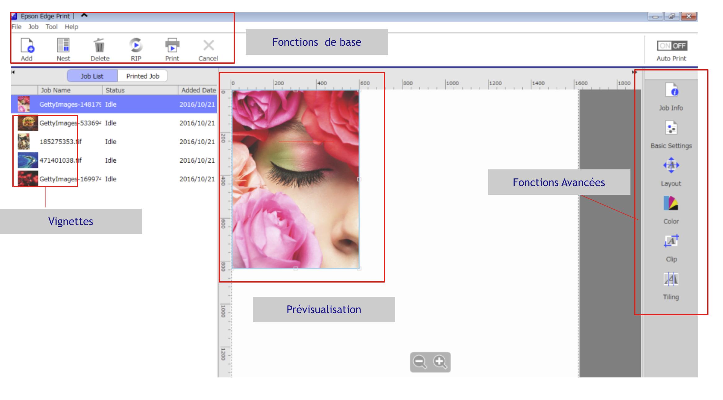 Epson Edge Print - Interface